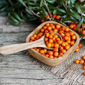 sea buckthorn berries in wooden bowl with fresh bush of berries beside
