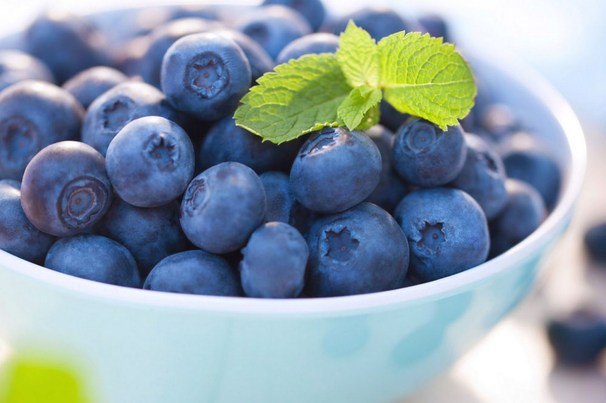 Blueberry Benefits: What Blueberry Antioxidants Mean To You!