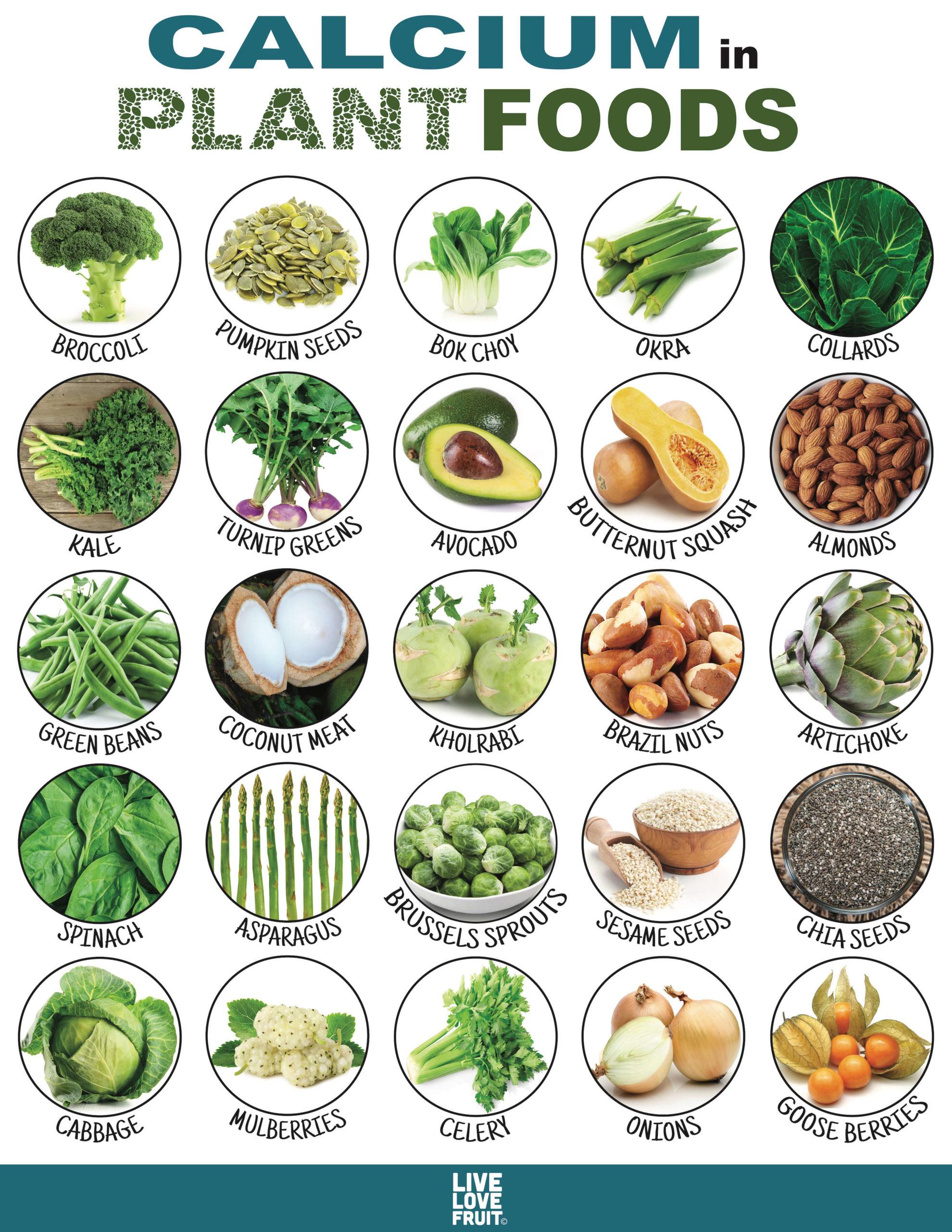 Bioavailability Food List