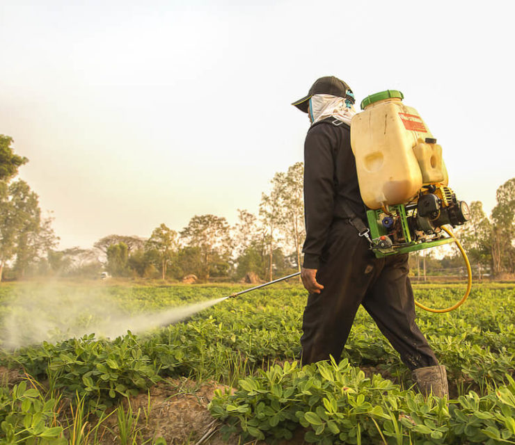 man spraying crops with pesticides