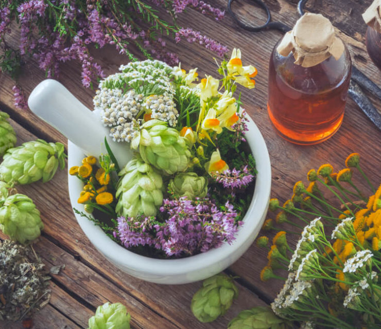 Mortar of medicinal herbs, healthy plants, bottle of tincture or infusion