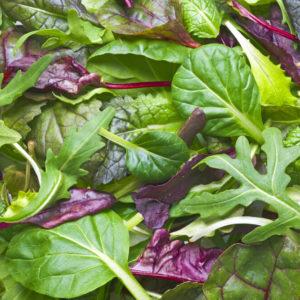 various fresh leafy greens