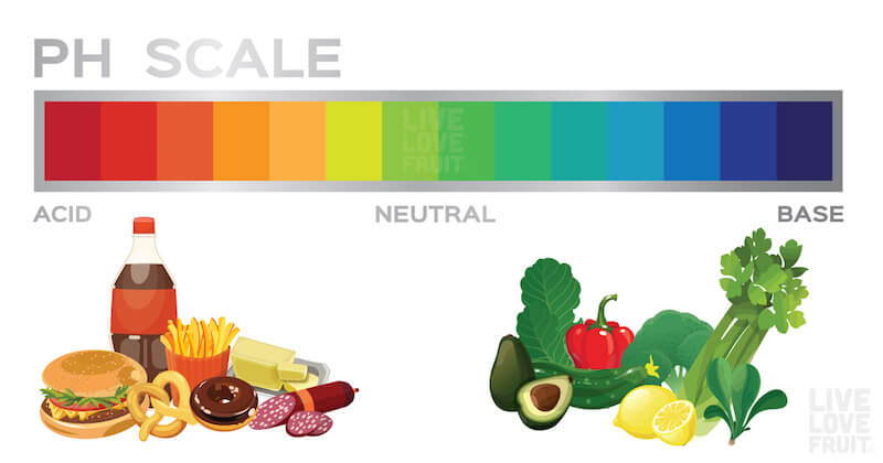 Natural Alkaline Foods