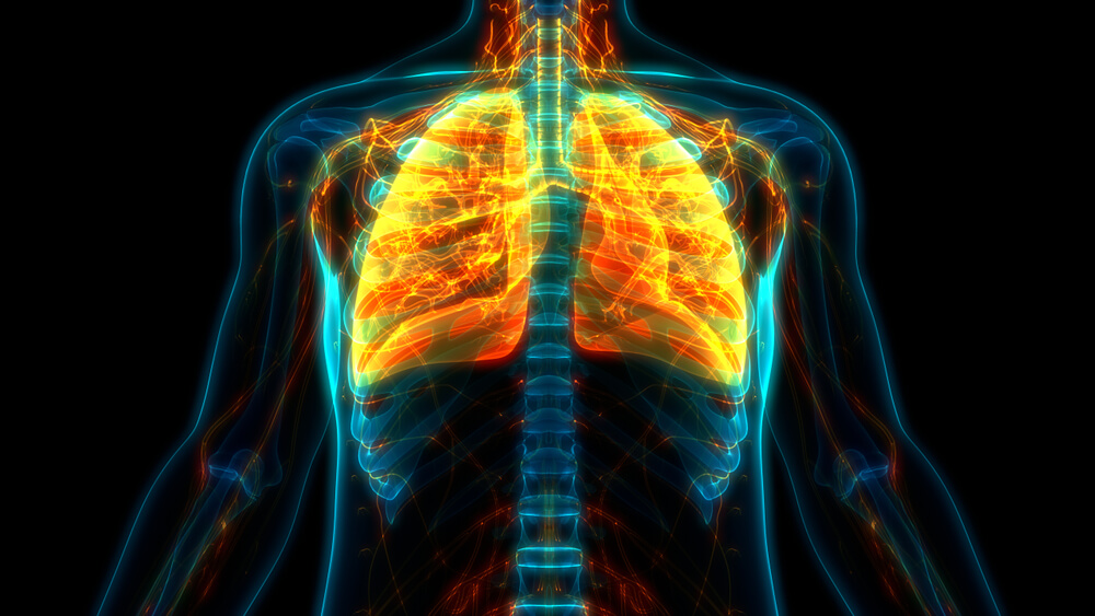 healing the lungs naturally