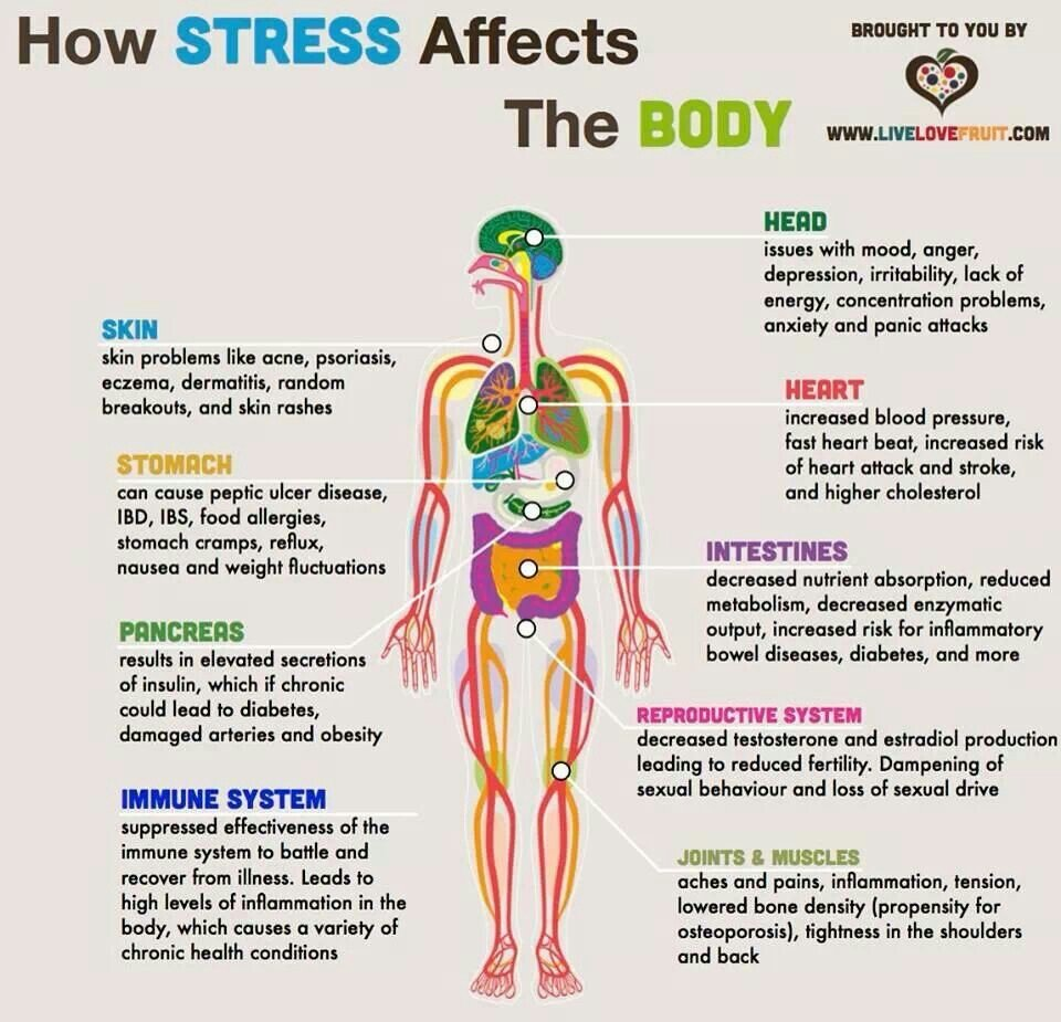 10 Organs In The Body Affected By Stress