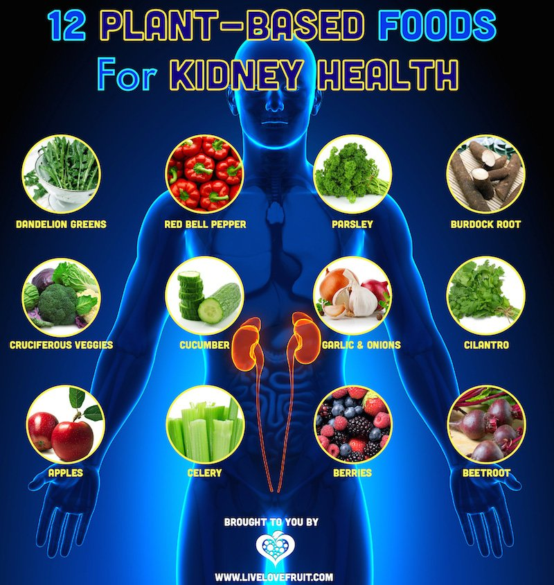 What Foods Can Kidney Patients Eat