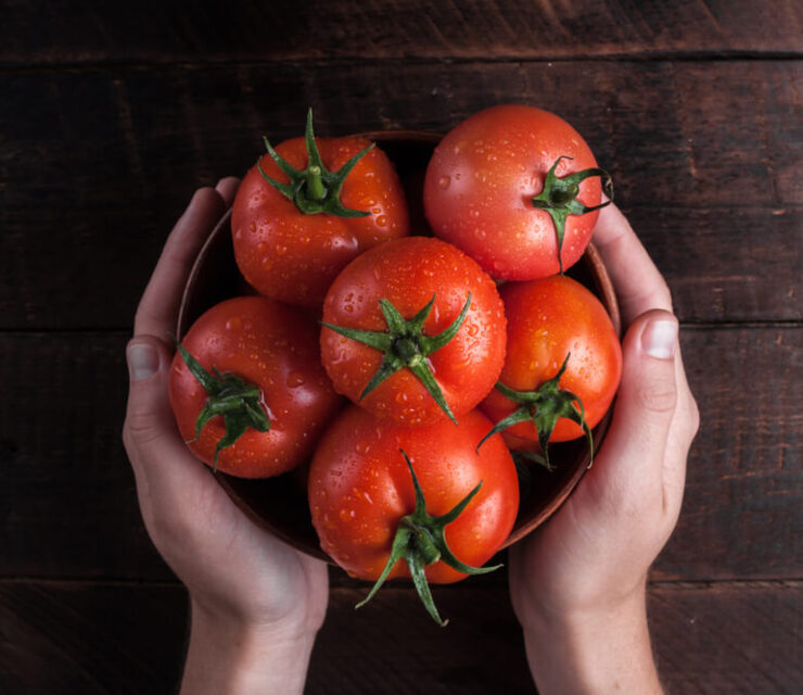 woman hands holding bowl of tomatoes
