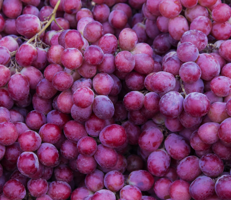 red grapes in a bunch