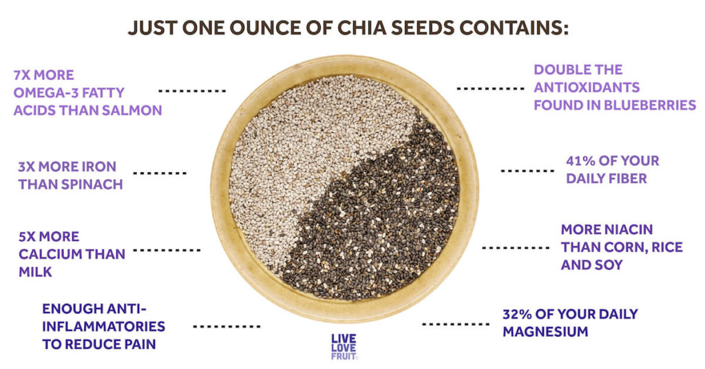 diagram representing what one ounce of chia seeds contains