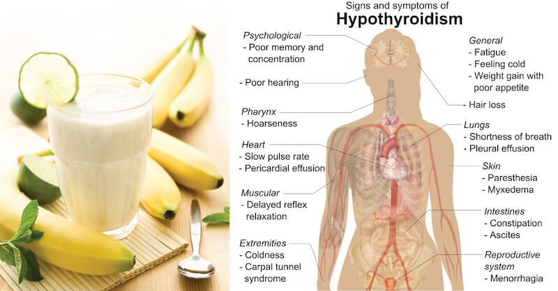 Reverse Hypothyroidism Naturally