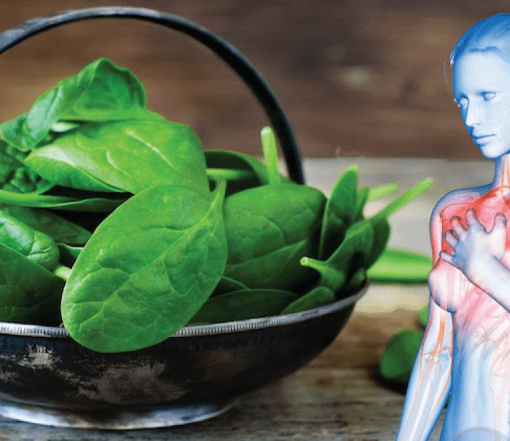 magnesium-rich plant foods
