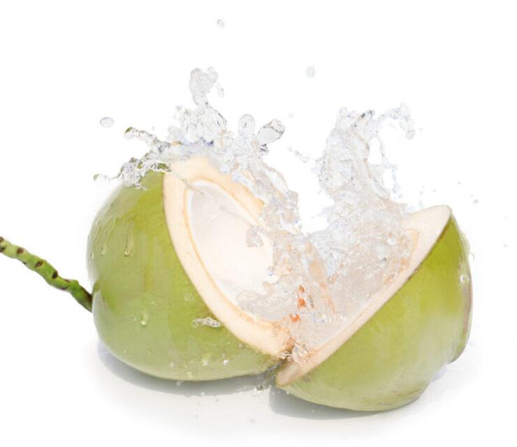 freshly cracked open young coconut