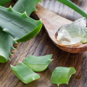 Fresh aloe leaves and aloe gel in the wooden spoon on the table