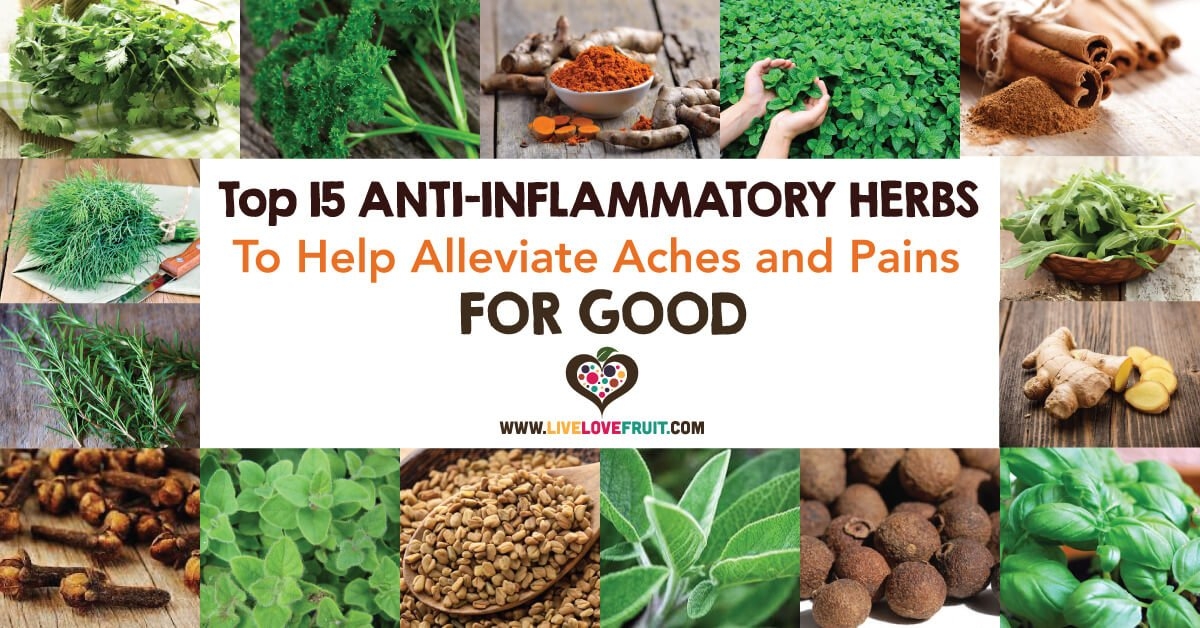 Anti-inflammatory-Herbs