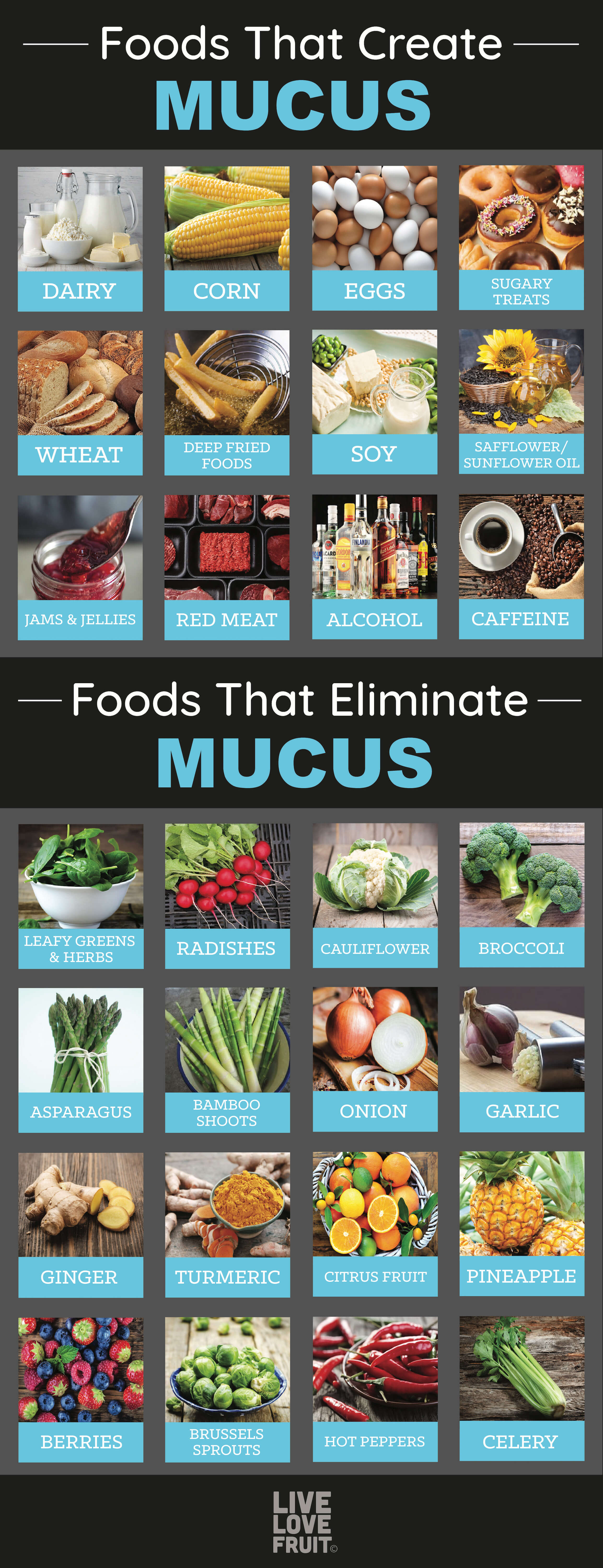 Foods That Get Rid Of Mucus In The Body