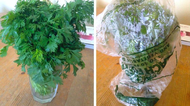 herbs-last-longer