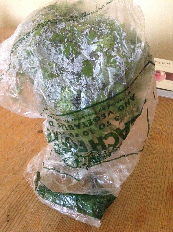 keep-herbs-fresh