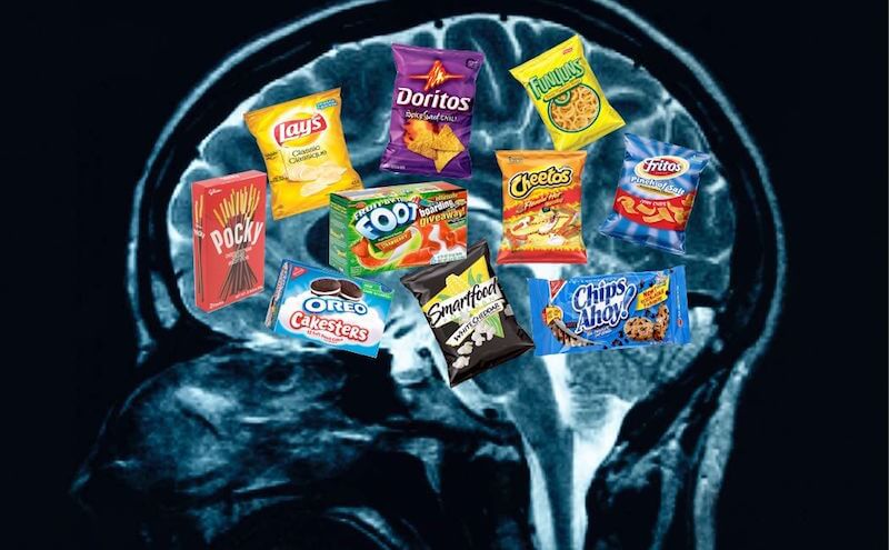 How Junk Food Changes our Brain Chemistry