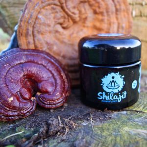 Purified Shilajit Resin