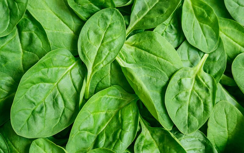 Health Benefits of Eating Spinach