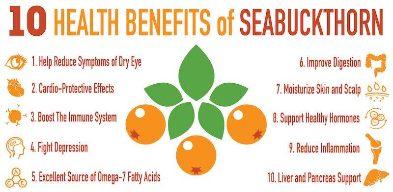 Seabuckthorn-benefits