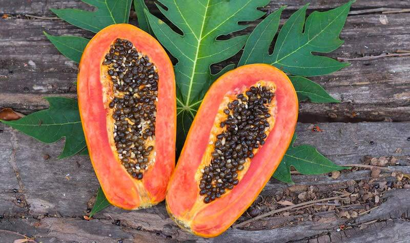 health-benefits-papaya-seeds