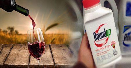 glyphosate in wine