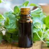 bottle of oregano oil with fresh oregano on table