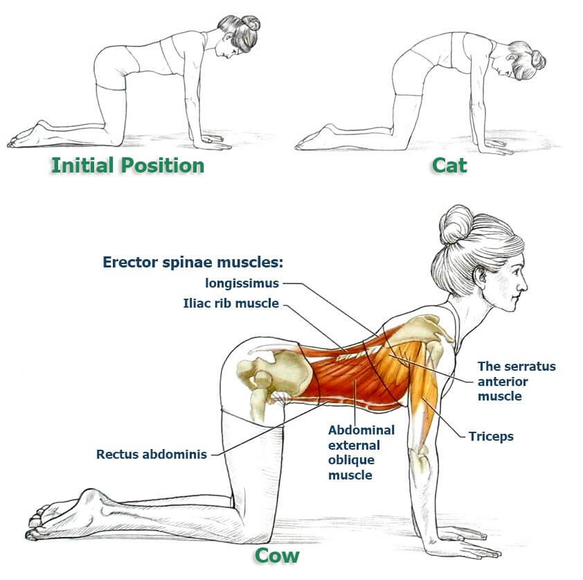 These 10 Exercises Will Un Slouch Your Back To Correct Bad Posture