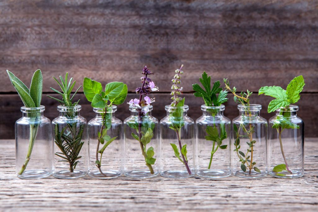 variety of herbs placed in tiny glass jars on wooden background