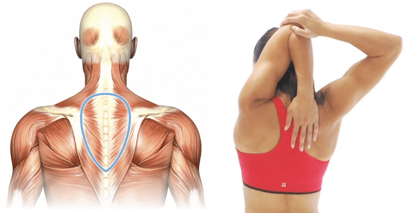 8 Upper-Body Stretches for When Your Back, Neck and Shoulders Are ...