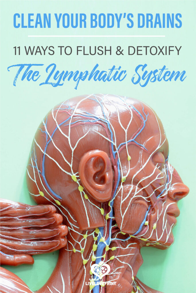 lymphatic system of human on diagram with text - clean your body's drains: 11 ways to cleanse and detoxify the lymphatic system