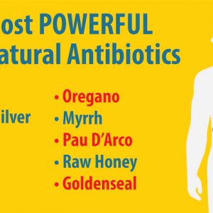 illustration of body with text about natural antibiotics