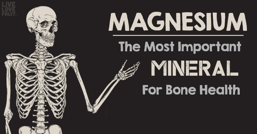 vector skeleton on black background with text - magnesium: the most important mineral for bone health