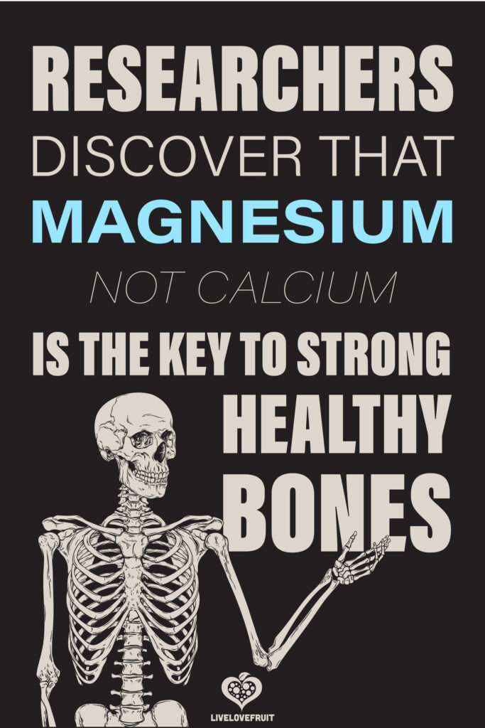 skeleton graphic with text - researchers discover that magnesium not calcium is the key to strong healthy bones