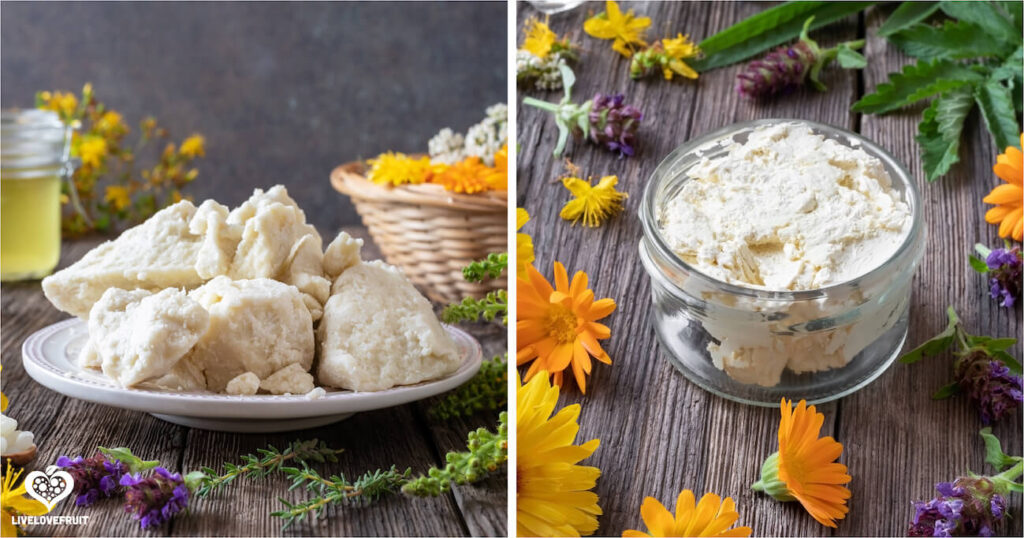 shea butter with herbs representing citrus lavender body butter