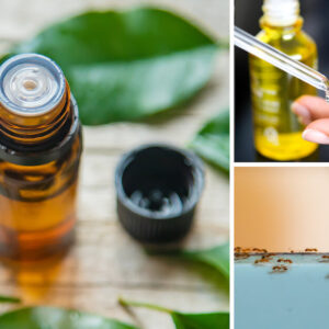 variety of uses of tea tree oil