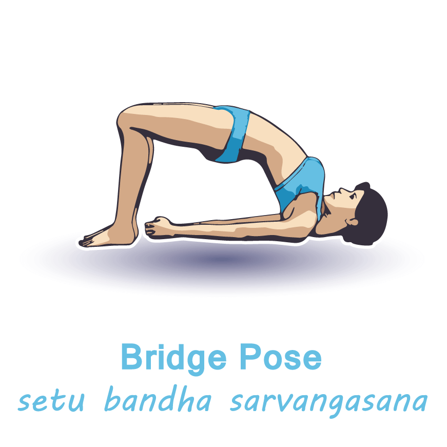 bridge pose