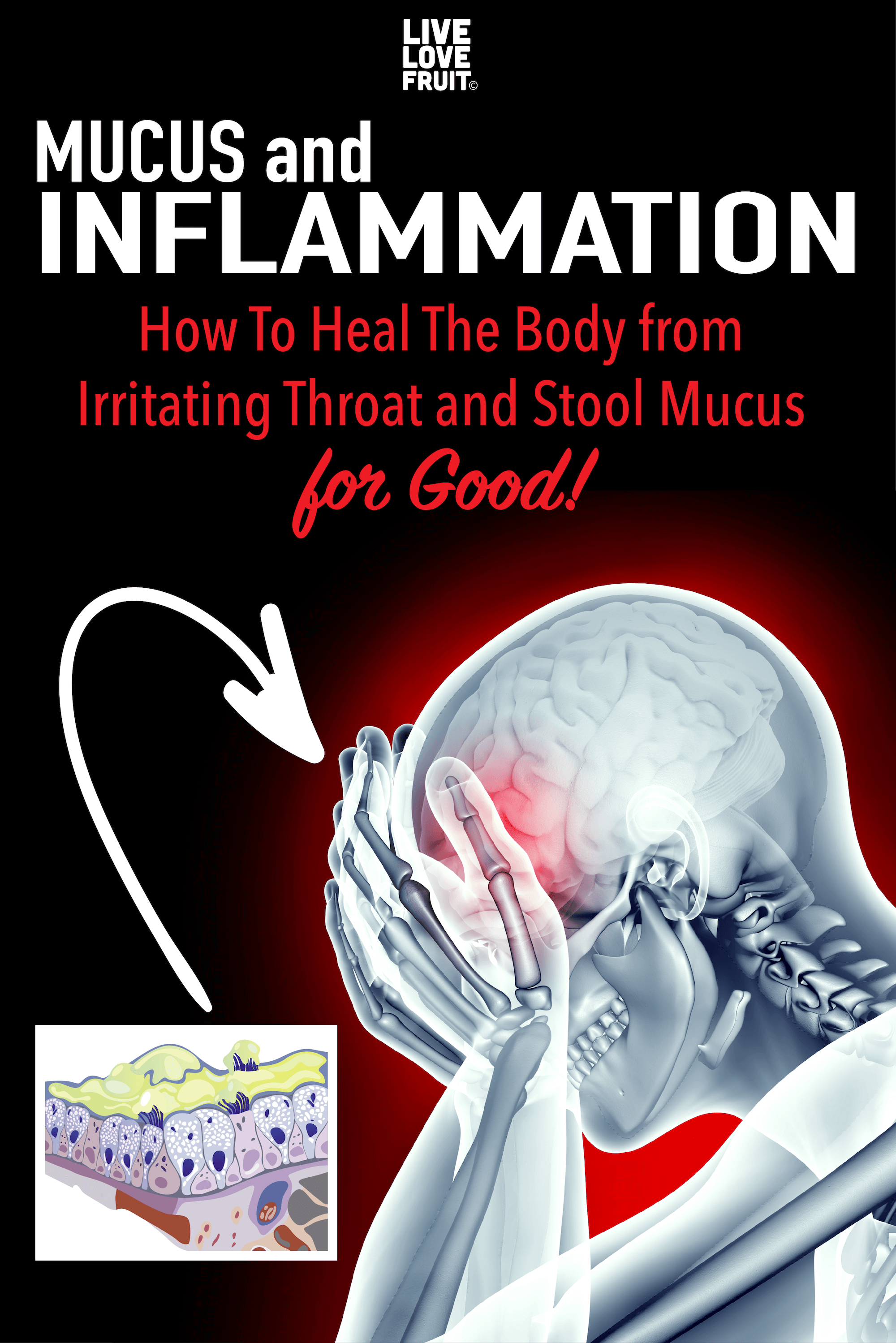 Mucus and inflammation go hand in hand. You can't have one without the other. Here's how to reduce chronic inflammation to eliminate mucus for good.