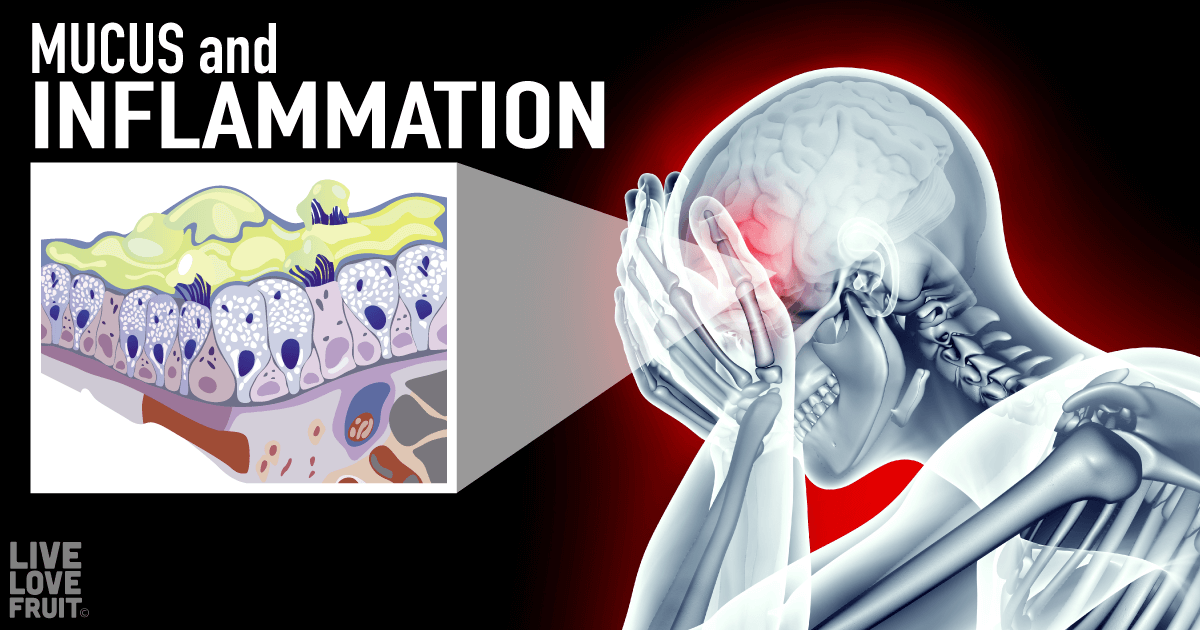 mucus and inflammation