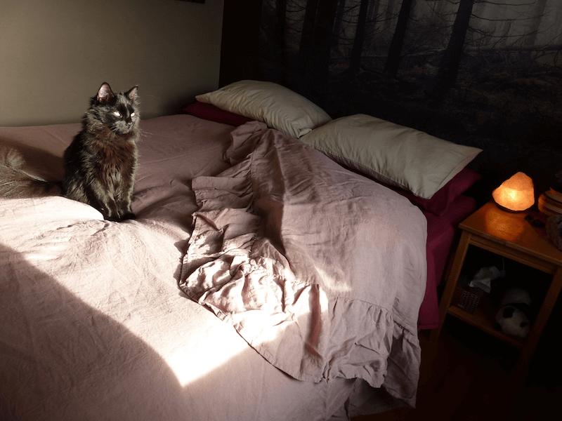 sleeping on linen