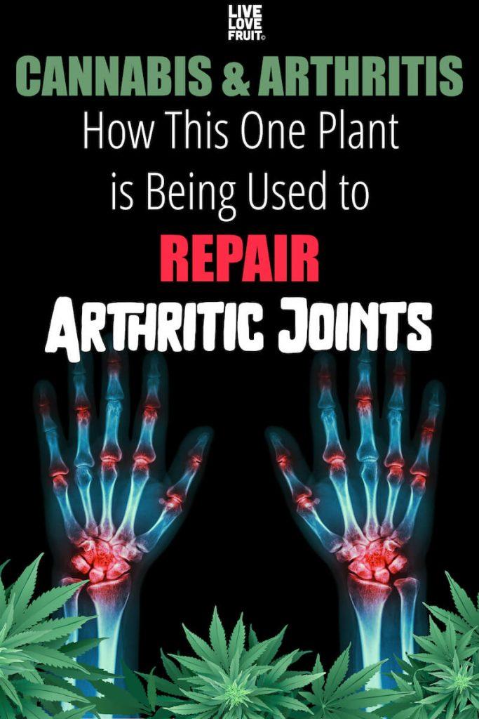 cannabis for arthritis