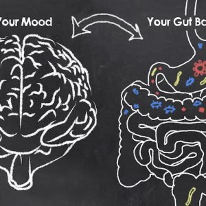 gut-brain axis