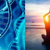 Yoga and Meditation Reverses DNA Damage