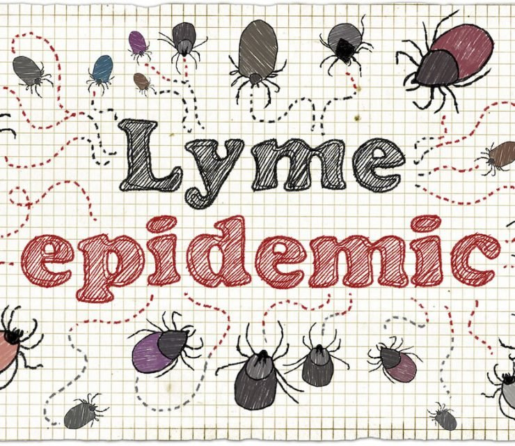 Natural Treatment Plan for Chronic Lyme Disease