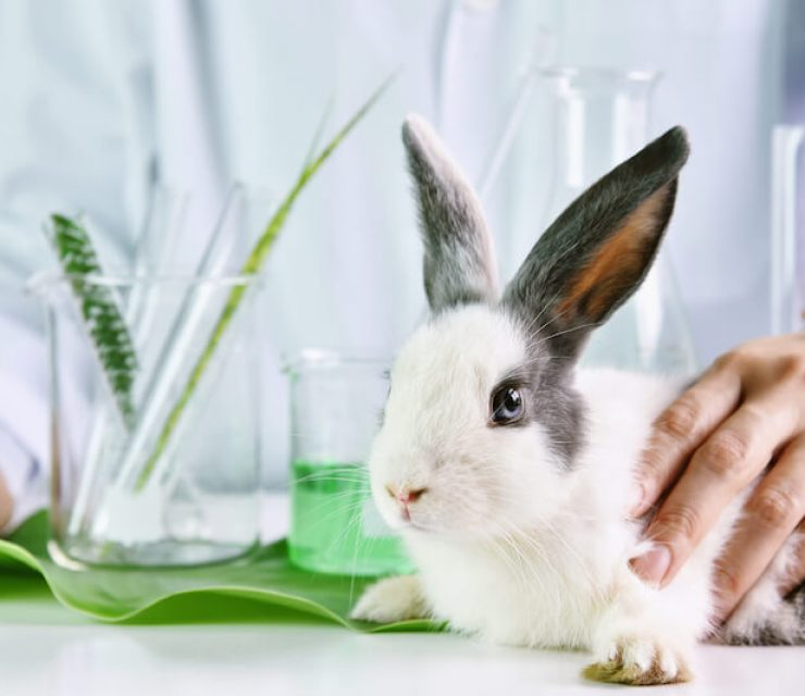 cosmetic testing on animals illegal in canada