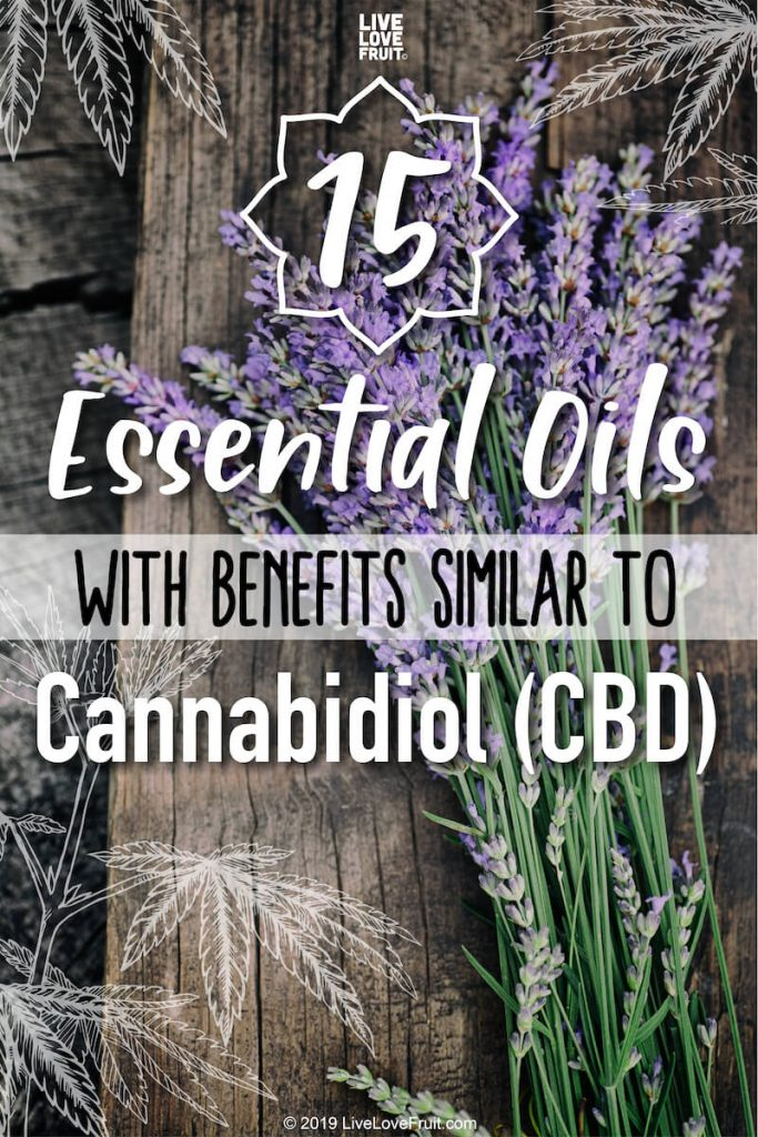 essential oils with benefits similar to CBD