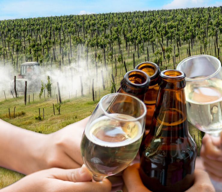 glyphosate in beer and wine