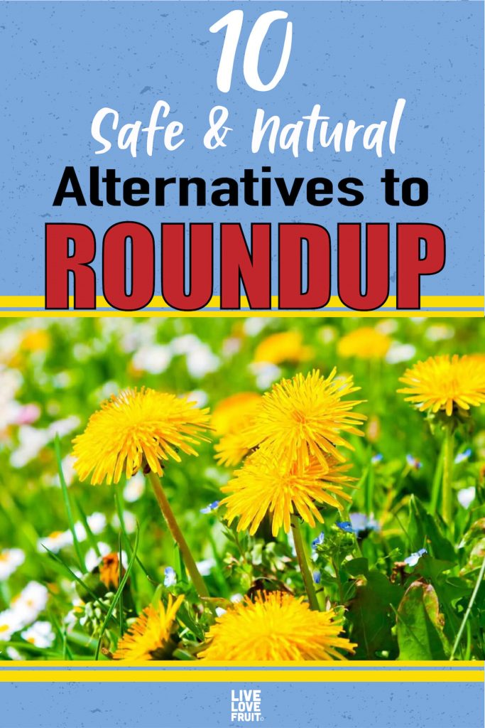 natural alternatives to roundup