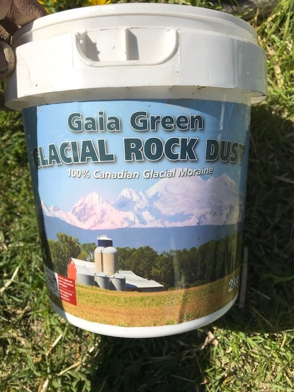 Container of Gaia Green Glacial Rock Dust